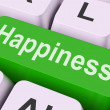 Happiness Key Means Delight Or Jo — Foto Stock