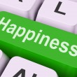Happiness Key Means Delight Or Jo — 图库照片