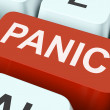 图库照片: Panic Key Shows Panicky Terror Or Distress