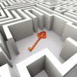 Lost Key In Maze Shows Security Solution — Stock Photo #32852651