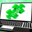 Credit Laptop Shows Finance Or Loaning For Purchasing — Stock Photo #32852855