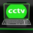 CCTV Laptop Monitoring Shows Security Protection Or Online Surve — Stock Photo #32854199