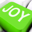 Joy Keys Mean Enjoy Or Happ — Stock Photo