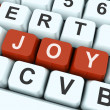 Joy Key Shows Fun Or Happines — Foto de Stock