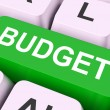 Stock Photo: Budget Key Means Allowance Or Spending Pla