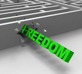 Freedom From Maze Shows Liberty — Stock Photo