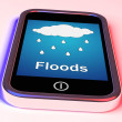 Floods On Phone Shows Rain Causing Floods And Flooding — Stock Photo #40855311