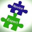 Novice Expert Puzzle Shows Unskilled And Professional — Stock Photo #40855745
