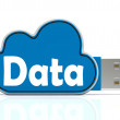 ������, ������: Data Memory Stick Shows Backing Up To Cloud Storage