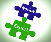 Novice Expert Puzzle Shows Unskilled And Professional — Stock Photo