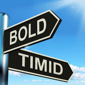 Bold Timid Signpost Shows Extroverted And Shy — Stock Photo