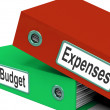 Budget Expenses Folders MeBusiness Finances And Budgeting — Stock Photo #40864287