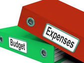 Budget Expenses Folders Mean Business Finances And Budgeting — Stock Photo