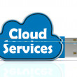 Stock Photo: Cloud Services Memory Stick Shows Internet File Backup And Shari