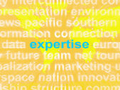 Expertise Word Cloud Shows Skills Proficiency And Capabilities — Stock Photo