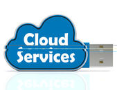 Cloud Services Memory Stick Shows Internet File Backup And Shari — Stock Photo