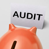 Audit Piggy Bank Shows Inspect Analyze And Verify — Zdjęcie stockowe