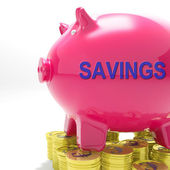 Savings Piggy Bank Means Spare Funds And Bank Account — Stock Photo