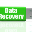 Data Recovery Pen drive Means Safe Files Transfer Or Data Recove — Stock Photo