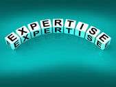 Expertise Blocks Mean Expert Skills Training and Proficiency — Stock Photo