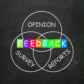 Feedback Gives Reports and Surveys of Opinions — Stock Photo