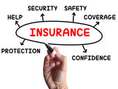 Insurance Diagram Shows Protection Coverage And Security — Stock Photo