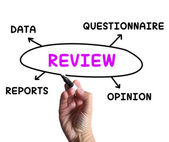 Review Diagram Means Examine Evaluate And Survey — Stock Photo