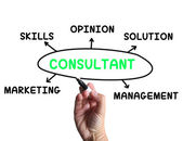 Consultant Diagram Means Specialist Skills And Opinions — Stock Photo