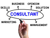 Consultant Diagram Shows Expert With Opinions And Solutions — Stock Photo