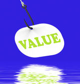 Value On Hook Displays Great Significance Or Importance — Stock Photo