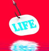 Life On Hook Displays Happy Lifestyle Or Prosperity — Stock Photo