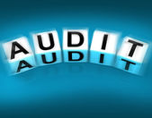 Audit Blocks Displays Investigation Examination and Scrutiny — Stock Photo