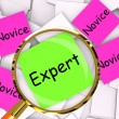 Expert Novice Post-It Papers Mean Experienced Or Inexperienced — Stock Photo #47471515