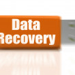 Data Recovery USB drive Means Safe Files Transfer Or Data Recove — Stock Photo