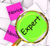 Novice Expert Post-It Papers Mean Amateur Or Skilled — Stock Photo