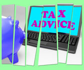 Tax Advice Piggy Bank Shows Professional Advising On  Taxation — Stock Photo