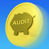 Audit Gold Coin Shows Auditing And Inspection Of Finances — Stock Photo