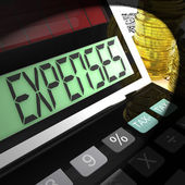 Expenses Calculated Means Company Costs And Accounting — Stock Photo