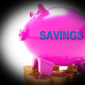 Savings Piggy Bank Coins Means Spare Funds And Bank Account — Stock Photo