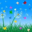 Butterflies Sky Means Dandelion Hair And Butterfly — Stock Photo #48827211