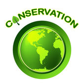 Conservation Globe Means Eco Friendly And Conserving — Stock Photo