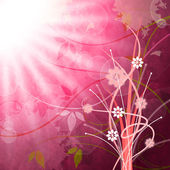 Sun Rays Means Flower Flowers And Pink — 图库照片