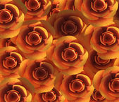 Background Roses Shows Backdrop Flower And Valentine — Stock Photo
