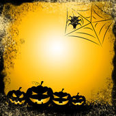 Spider Halloween Indicates Trick Or Treat And Celebration — Stock Photo