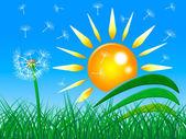 太阳光线显示绿草和梁 — 图库照片