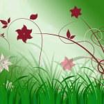 Elegant Floral Background Means Elegant Natural Beaut — Stock Photo #48867463