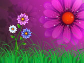 Flowers Background Means Garden Spring And Bloomin — Foto de Stock