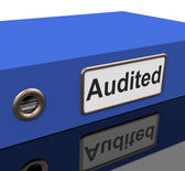 Audited File Shows Business Scrutiny And Inspect — Stock Photo