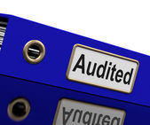 Audited Audit Indicates Auditor Verification And Binder — Stock Photo
