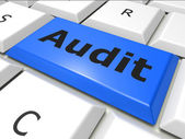 Audit Online Indicates World Wide Web And Analysis — Foto Stock